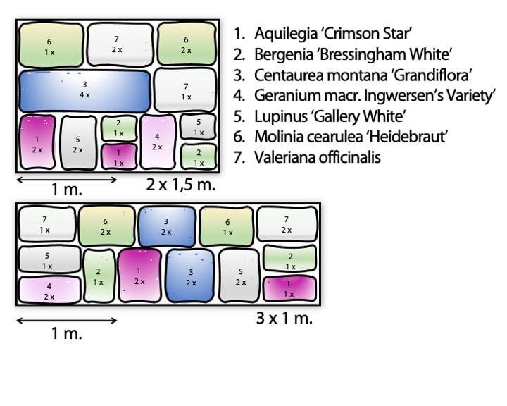Paquet pour bordure Violet-Blanc