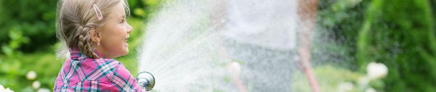 Acheter plantes de haies